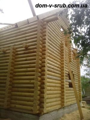 Log buildings under construction_112